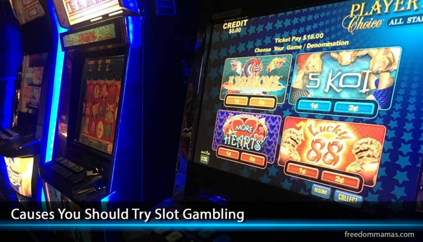 Causes You Should Try Slot Gambling